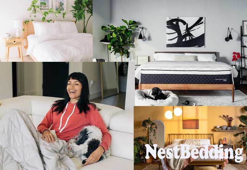 9 Best Selling Products from NestBedding
