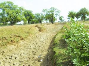 बीस साल पुरान नहर, कतौ नहीं मिला पानी