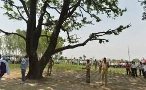 27-11-14 Kshetriya Badayun - Rape Case Tree