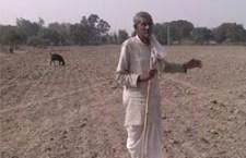 अपने खाली खेत को निहारता बुढ़ा किसान