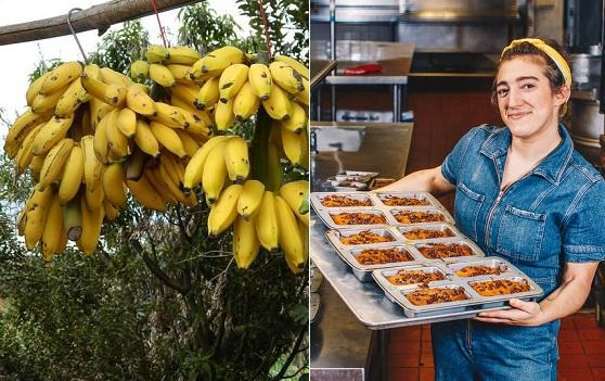Allie Chernick, banana bread, New York