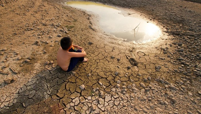 Climate change, climate adaptation, CDP