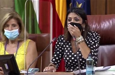 Rat Spain, Parliament