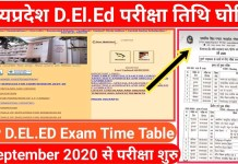 deled time table 2020