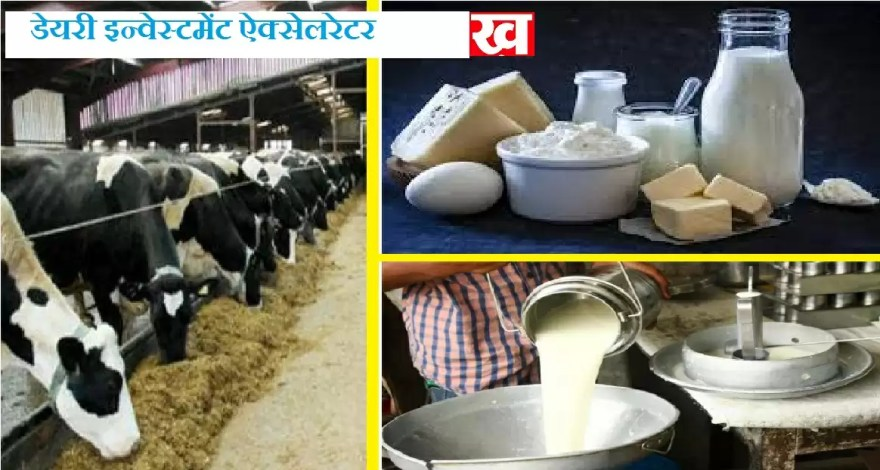 dairy investment