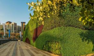 Revealed The Middle East's Largest 'Living Green Wall' at Dubai Wharf
