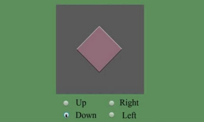 This optical illusion causes you to suppose diamond is moving around screen