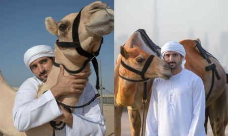 Video Sheikh Hamdan calling out his Camels with Pet Names
