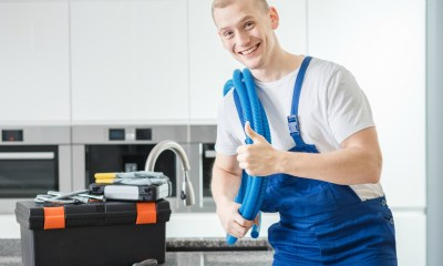 plumbing professional