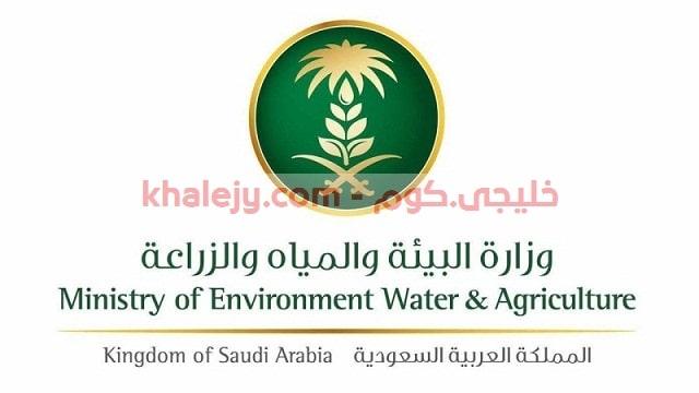 وزارة الزراعة وظائف منظمة الاغذية والزراعة بالامم المتحدة