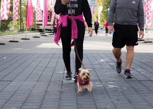 American Cancer Socity Making Strides Walk-1-4