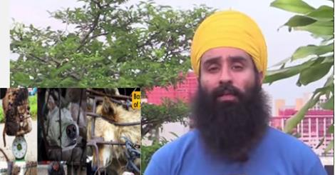 Singh Speaks Out Against Amimal Killing And Eating Festival by Basics Of Sikhi