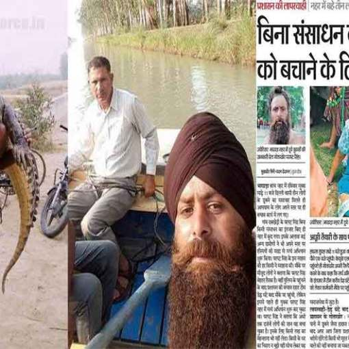 Croc hunter Pargat Singh (Supplied)