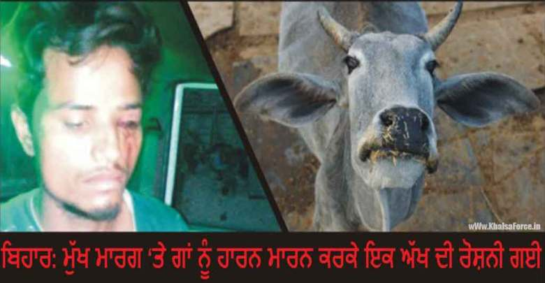 A Van Driver In Bihar Thrashed For Honking Horn At Cow, May Lose Sight In One Eye