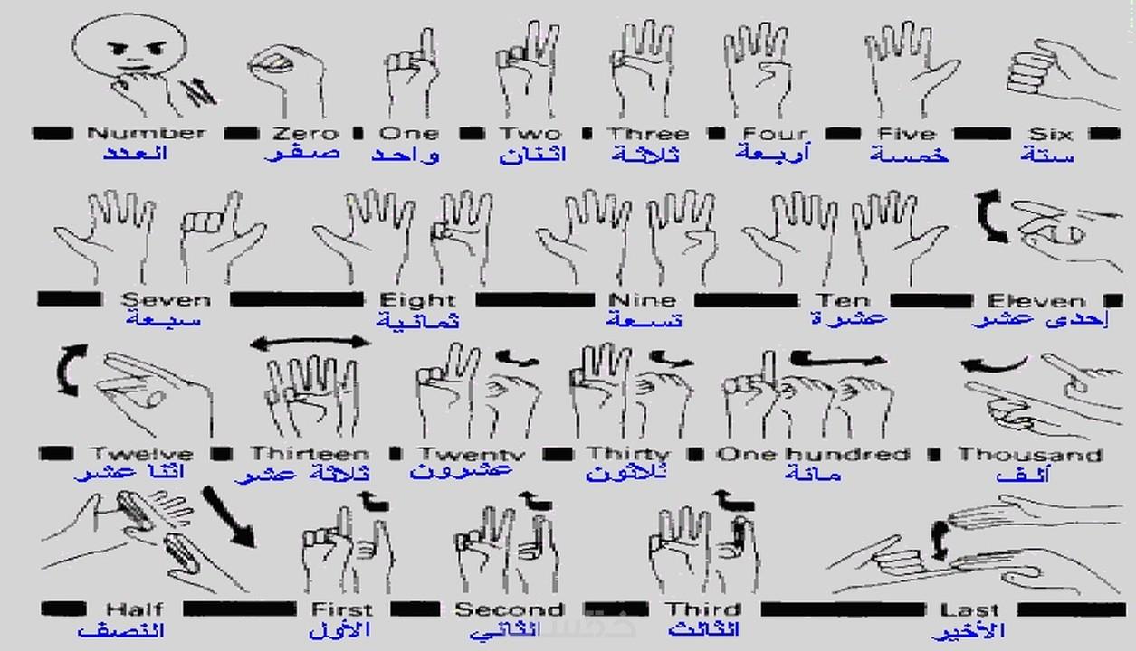 دورة تعلم لغة الإشارة مجانا