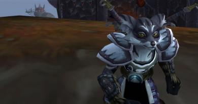 Vulpera Monk Level 75 in Northrend
