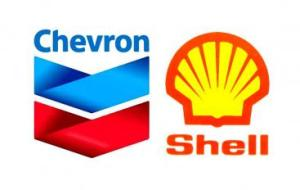 chevron-shell