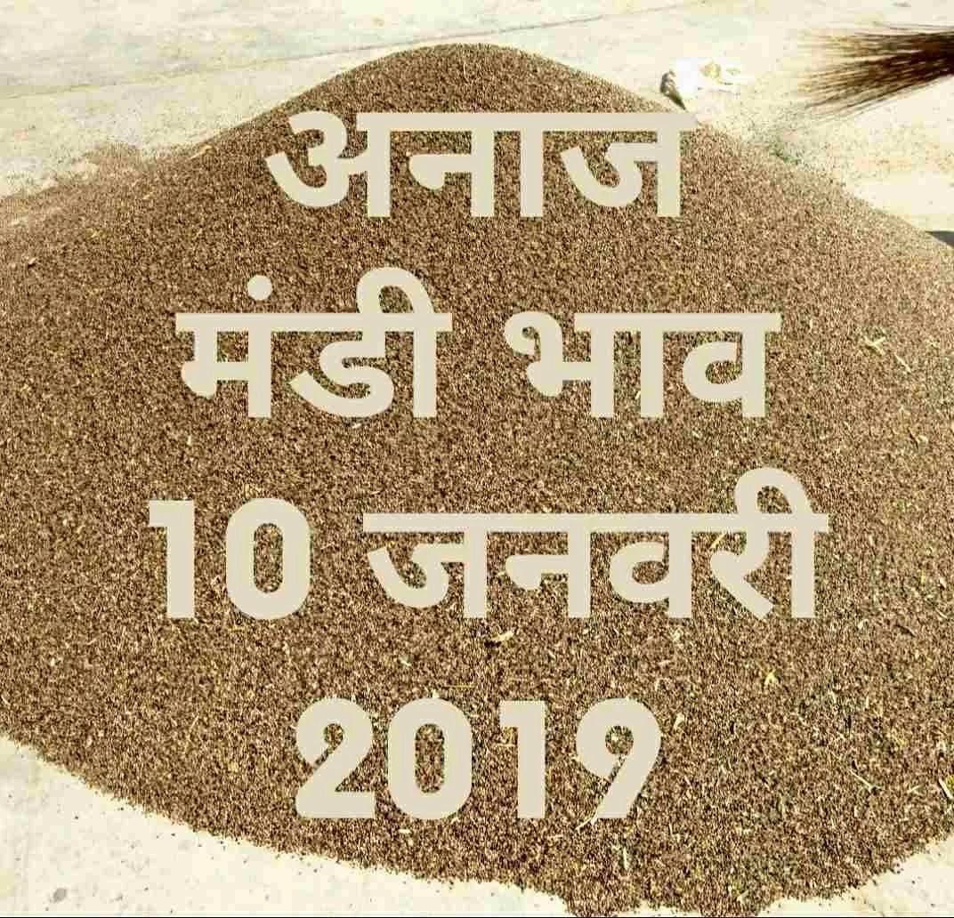 mandi-bhav-today-10-01-2019