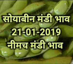 Soyabean mandi bhav , Neemach mandi rates , 21-01-2019