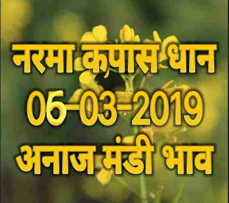 mandi bhav 06-03-2019 , mandi rates 06-march-2019