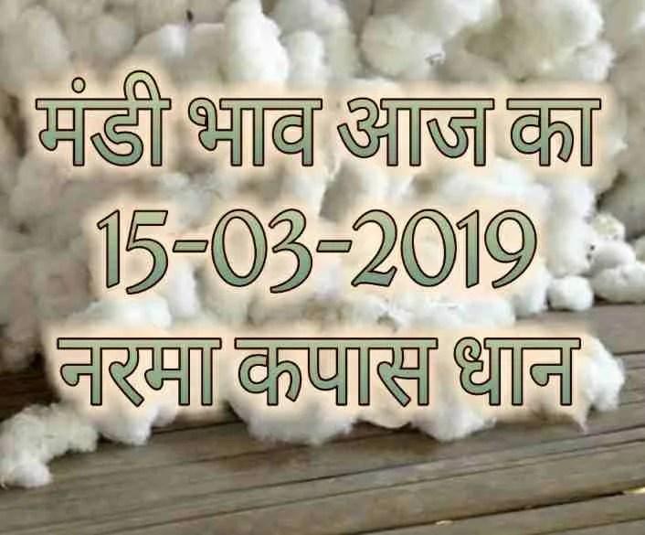 Mandi Bhav 15-03-2019 , Narma , Kapas , Dhaan