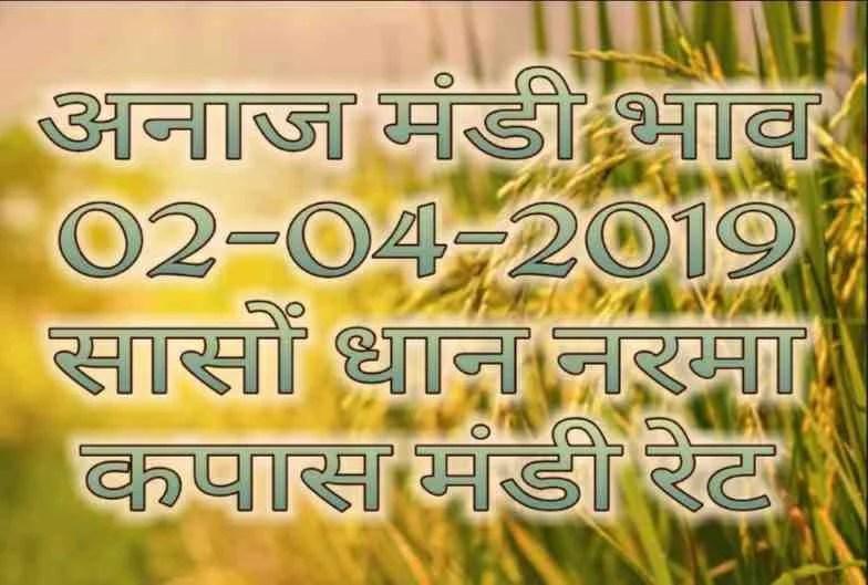 mandi bhav 02-04-2019 , sarso mandi rates , dhaan bhav aaj ka