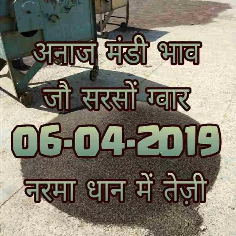 mandi bhav 06-04-2019 , sarso mandi rates