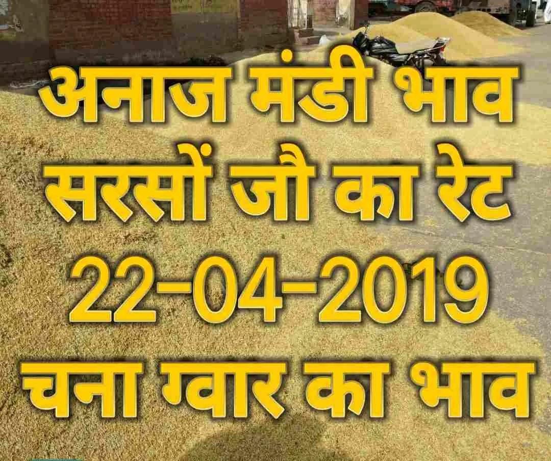 mandi bhav 22-04-2019 , jo bhav , sarso rates