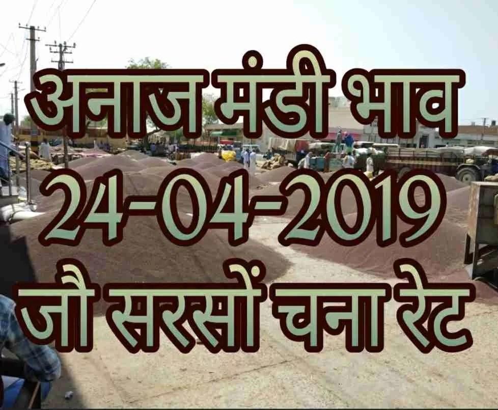 Mandi Bhav 24-04-2019 Gawar Jo Sarso Chana