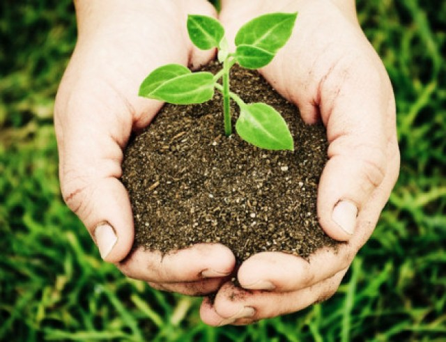 मिट्टी की जांच से जुड़े हर सवाल का जवाब
