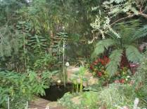 plants in winter gardens