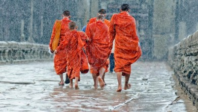 Photo of Hero rats, singing puddles and crowd-free ruins: A postcard from Cambodia in rainy season