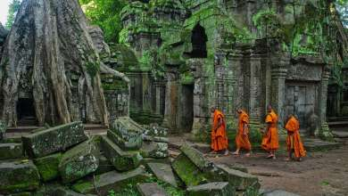 Photo of Explore Cambodia's ancient stone city