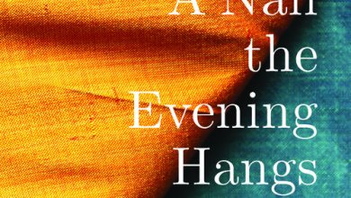 Photo of New Book: Monica Sok – A Nail the Evening Hangs On