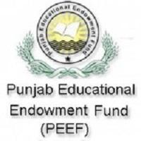 PEEF Master Scholarship 2019