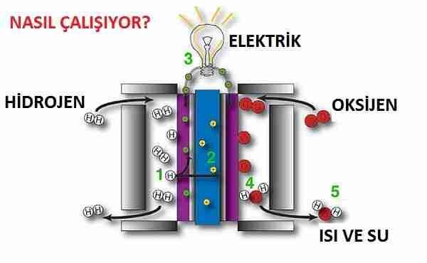 Sabancı Üniversitesi Öğretim Üyesi Doç. Dr. Selmiye Alkan Gürsel.