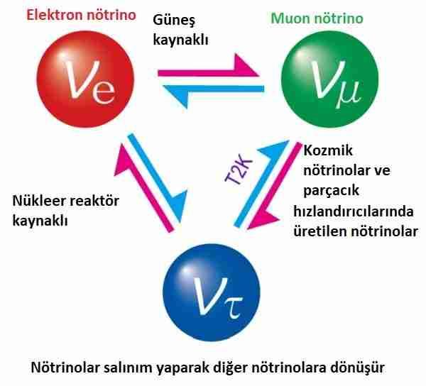 Nötrinoların-neden-kütlesi-var