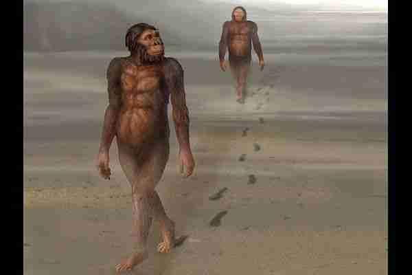 İnsanlar-ne-zaman-dik-yürümeye-başladı