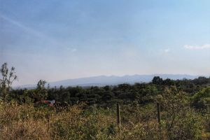 View of the Ngong Hills