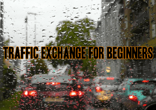 traffic_exchange_for_beginners