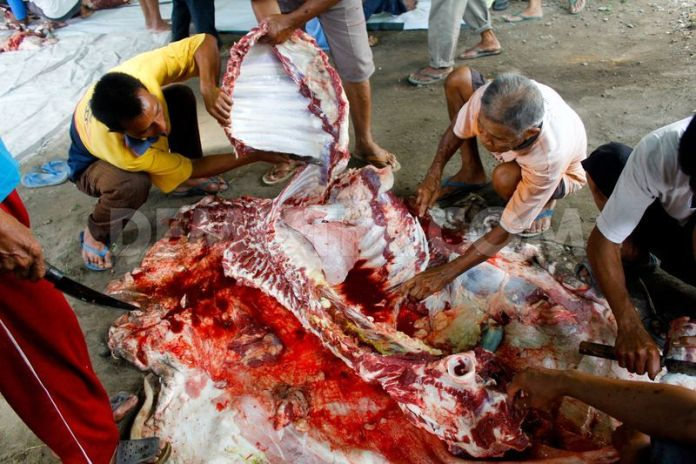 animal-slaughter-khurki.net