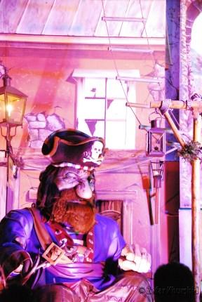 Pirates in Wonderland?