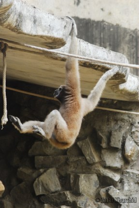 I'm just chillin'... Hanging out...