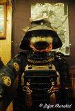 Armoured Warrior