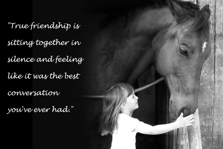 Friendship Conversations