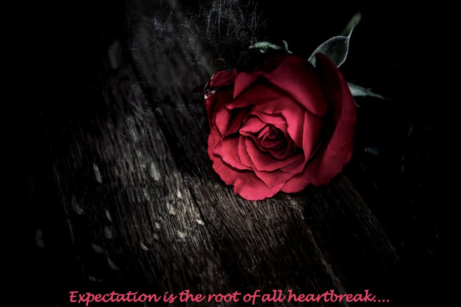 Expectation is the root of all heartbreak.