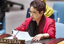 UN decolonization agenda incomplete without Kashmir solution: Pakistan