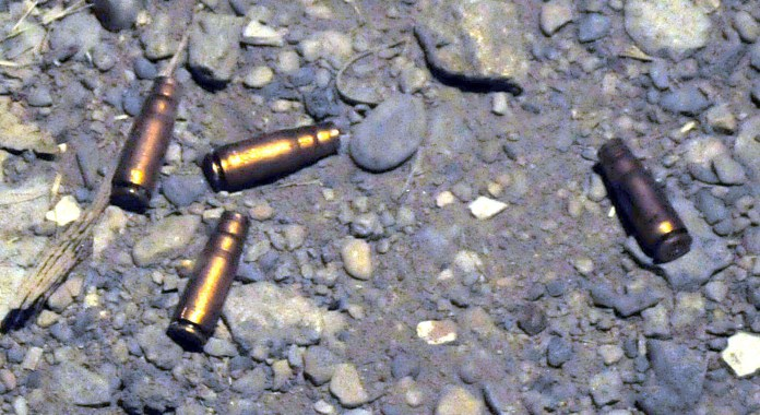 Father, son killed over family dispute in Malakand
