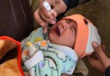 Anti-polio immunization