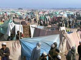 About 58,000 Afghan refugees voluntarily returned last year: UN